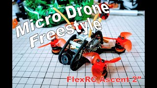 Micro Drone Freestyle | FlexRC Ascent 2"