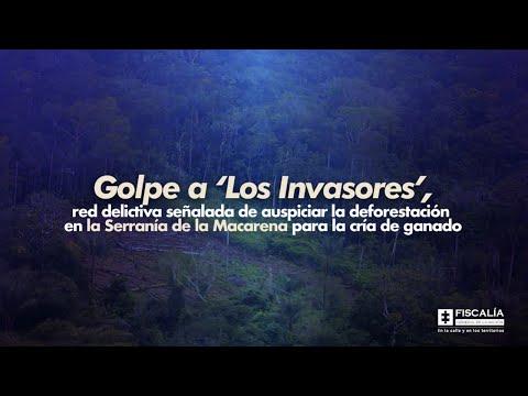 Fiscal Francisco Barbosa: Golpe a 'Los Invasores', red delictiva señalada de auspiciar deforestación