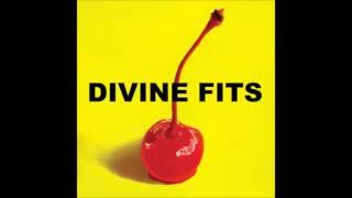 Divine Fits - Flaggin A Ride