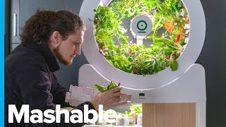 Smart Indoor Garden Grows 90 Fruits And Veggies At Once – Future Blink