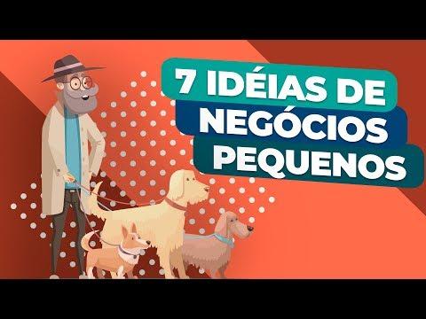 , title : '7 IDEIAS DE NEGÓCIOS (PEQUENOS) para AUMENTAR a sua RENDA'
