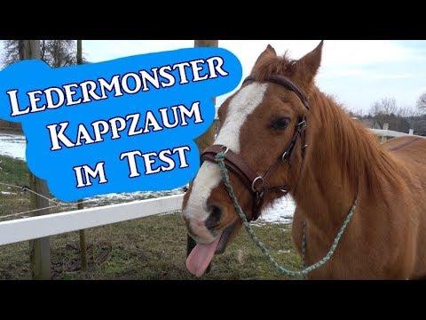 Neuer Kappzaum im Test - was taugt das Ledermonster? | Serenity Horses