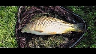 Базы отдыха для рыбалки в липецкой области