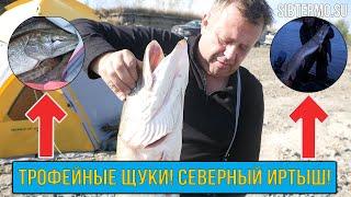Северный рыбалка форум лыткино