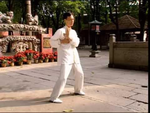 Formes Et Technique Du Pan Nam Wing Chun L Oeil D Haze