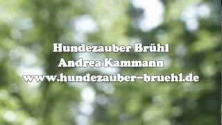 preview picture of video 'Imagefilm Hundezauber Brühl'