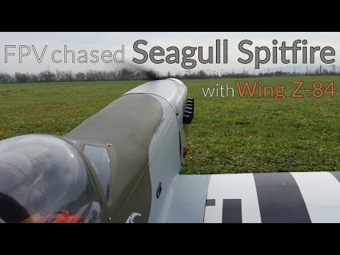 fpv-chased-seagull-spitfire-with-wing-z84