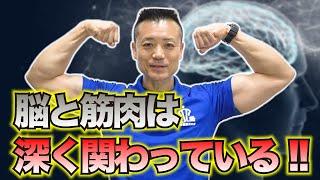 【中高年専門】人生は筋肉だ!脳と筋肉の仕組みを理解することが大事!