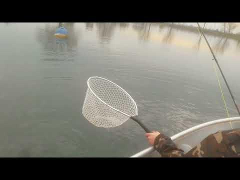 Per forum di quadro da pesca