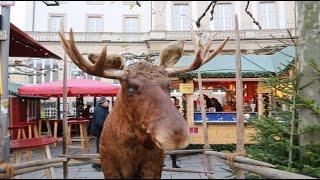 preview picture of video 'Weihnachtsmarkt in Kassel: Gang über den Königsplatz und Friedrichsplatz'