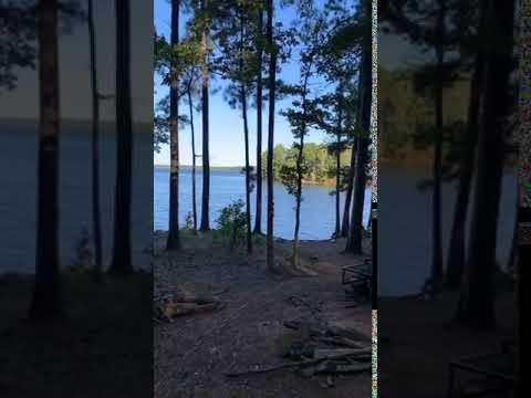 Video Of Hamilton Branch, SC