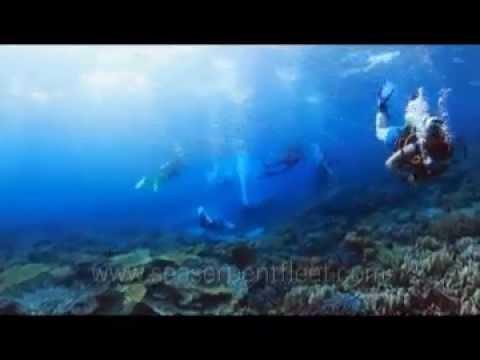 Northern Wrecks and Strait of Tiran