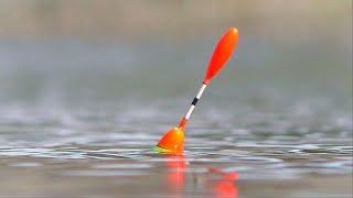 О ТАКОМ КЛЁВЕ ТОЛЬКО МЕЧТАТЬ. Рыбалка на поплавочную удочку. Первый весенний карась.