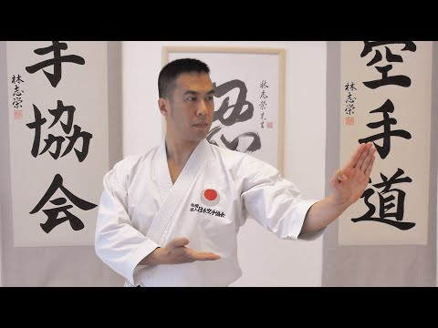 LET'S LEARN KARATE with Ryan Hayashi #1 - Beginners Training At Home