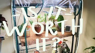 I bought an indoor greenhouse | full review & experience so far!