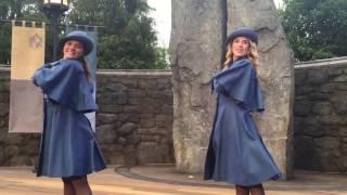 Beauxbatons Students Harry Potter