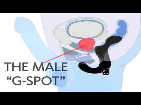 Witamina E na impotencję prostaty