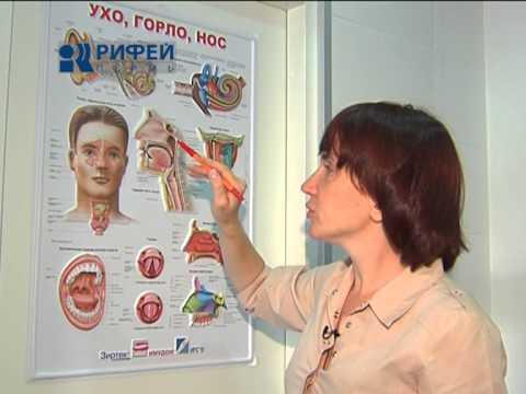 Минута здоровья  Нарывы в носу