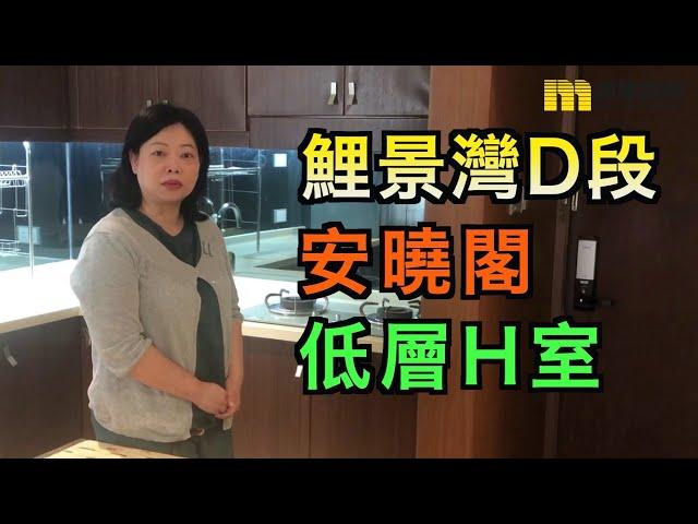 【#代理Michelle推介】鯉景灣D段安曉閣低層H室
