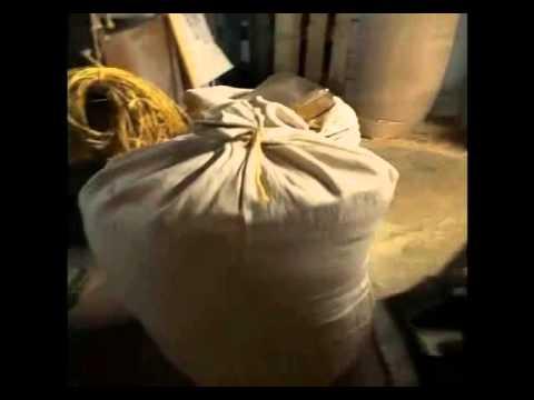 Histoire d'un grain de blé : de l'Epi au Pain en passant par la farine