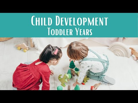 Child Development 101: Parenting Toddlers - YouTube