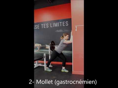 Les exercices pour le développement du muscle du dos