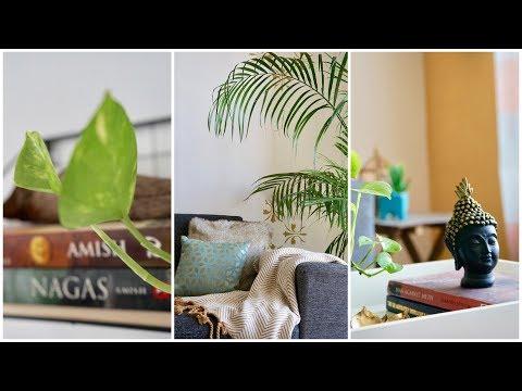 mp4 Home Decor Green, download Home Decor Green video klip Home Decor Green