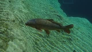 The Blue Hole Santa Rosa New Mexico Underwater Cam 4K Nikon KeyMission 170 Action Camera