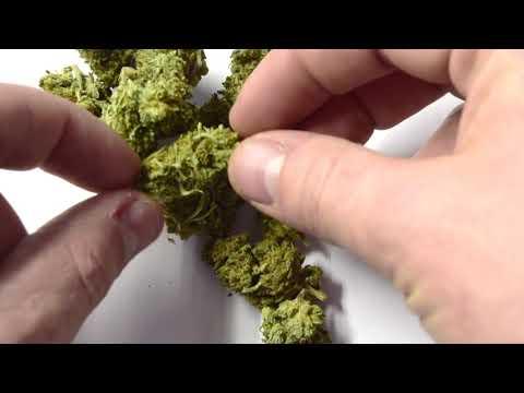 Tweedle Farms CBD Hemp Flower - смотреть онлайн на Hah Life