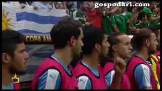 ИзСпортен свят: Успехите на Цвети Пиронкова и неуспехите на футболните ни национали