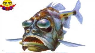"""Слушать Аудио Книги Видео """"Говорюща риба"""" Андієвська Емма Популярные Аудио Книги Детям"""