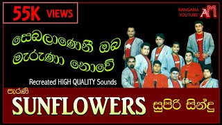 SUNFLOWERS NEW LIVE SHOW KOSWADIYA 1