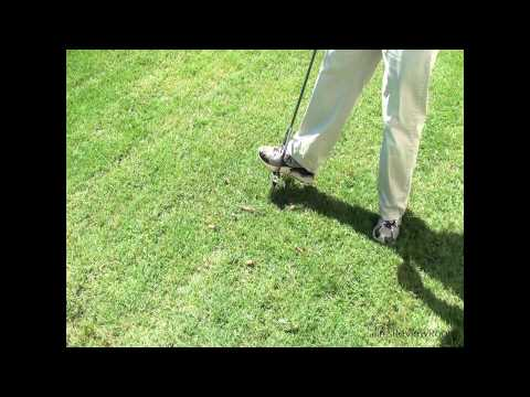 REVIEW: Lawn Aeration Tool - Lawn Butler D-6C