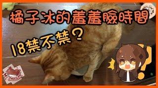 【巧克力】『橘子冰的日常』- 18禁不禁?橘子冰的羞羞臉時間