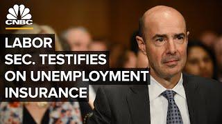 Labor Secretary Scalia testifies on unemployment insurance amid Covid-19 — 6/9/2020