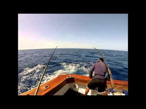 Fishings pagati nella regione di Rjazan