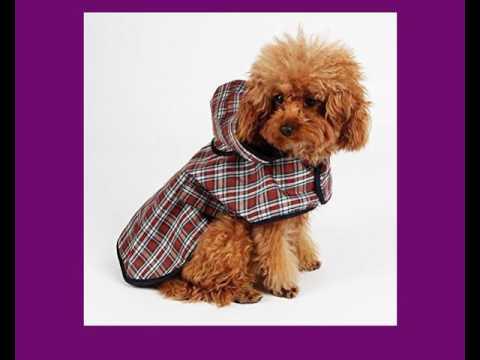 Regenmäntel für Hunde