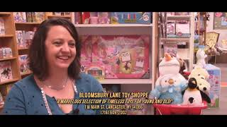 "DISC 229 - ""Bloomsbury Lane Toy Shoppe"", Lancaster, NY"