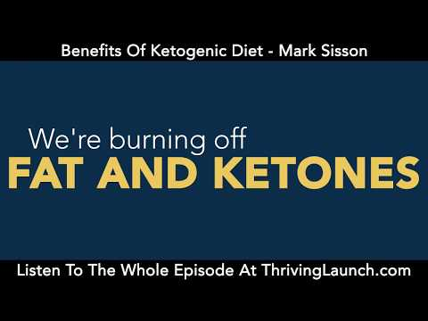 Video Benefits Of Ketogenic Diet - Mark Sisson