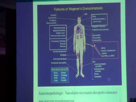 Le rôle des parasites dans la biocénose