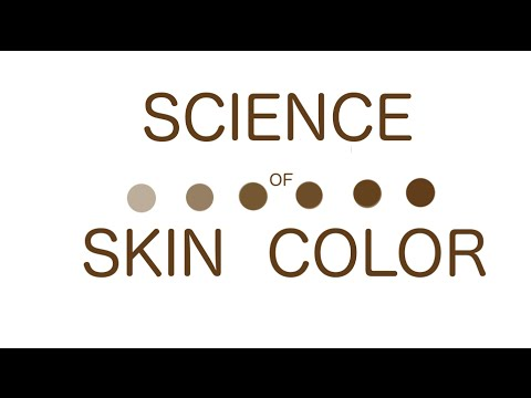 What Determines Our Skin Color? (More Videos on Science of Skin & Acne in Near Future)