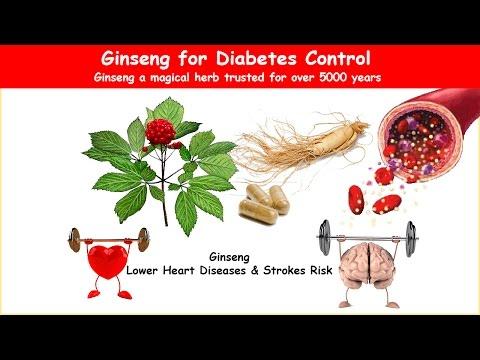 Ernährungstherapie bei Diabetes Michael Gurvich