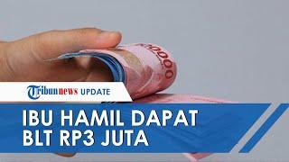 Ibu Hamil Terima BLT Rp3 Juta, Berikut Syarat dan Cara Pencairannya, Cek dtks.kemensos.go.id
