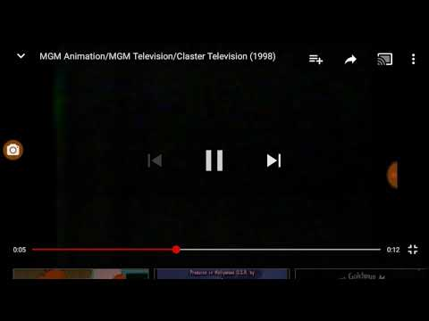 Metro Goldwyn Mayer Animation MGM Television Claster logo