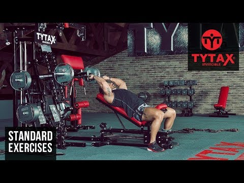 Lever Incline Triceps Extension | TYTAX® M2