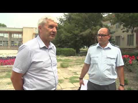 В Ростовской области Управлением Россельхознадзора выявлены земельные участки сельхозназначения заросшие сорной растительностью