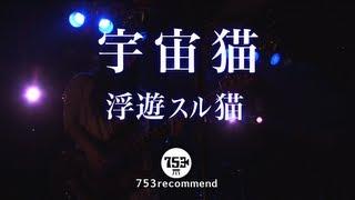 七五三レコメンド05 / 浮遊スル猫「宇宙猫」