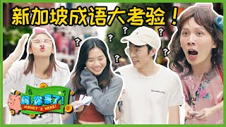Money's Here! 妈,你来了 EP5 | The Great Idioms Test 成语程度大考验