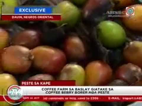 TV Patrol Central Visayas - Sep 22, 2017