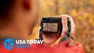 10 Fall Foliage Photography Tips From Nikon Ambassador Deb Sandidge   10Best